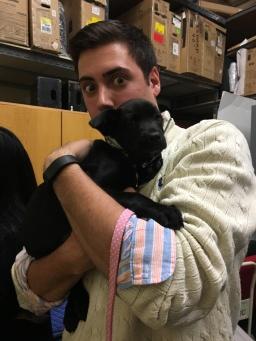 Jeff puppy 3